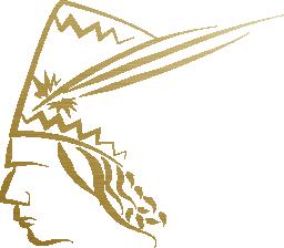 Krynicki miody pszczele logo